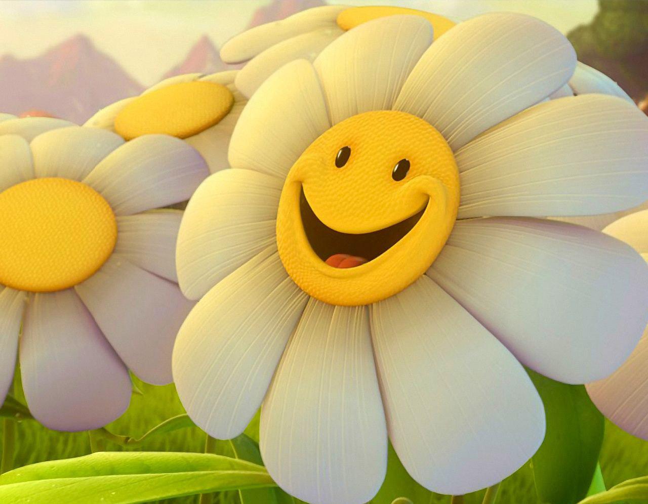 smiles | Capture This